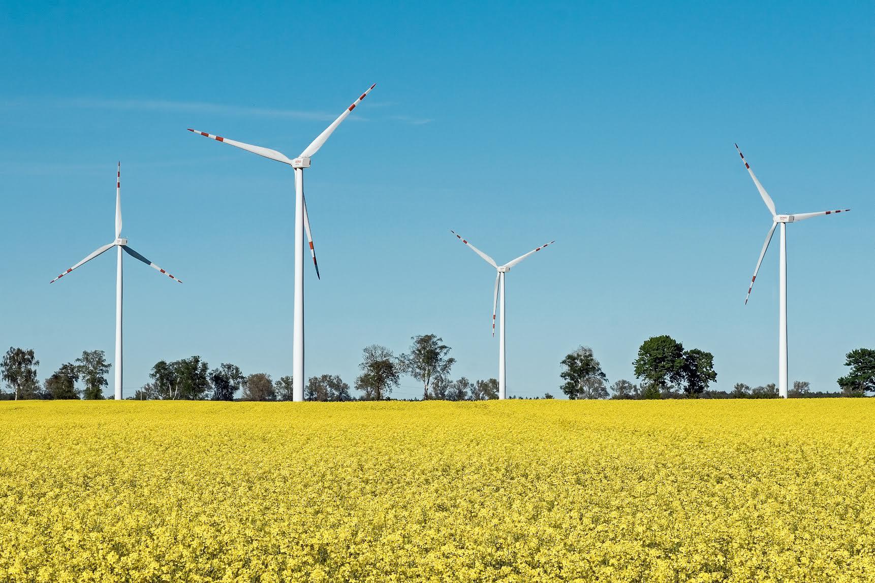 Konferencja: Odnawialne źródła energii w województwie zachodniopomorskim